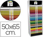 "COMPOSICION ""B"" CART. 50X65 IRIS R: 004083"