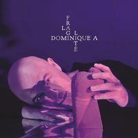 LA FRAGILITE (EDI. LIM. ) (2 CD)