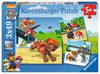 Paw Patrol * Puzzle 3x49 Cuadrado R: 09239 -