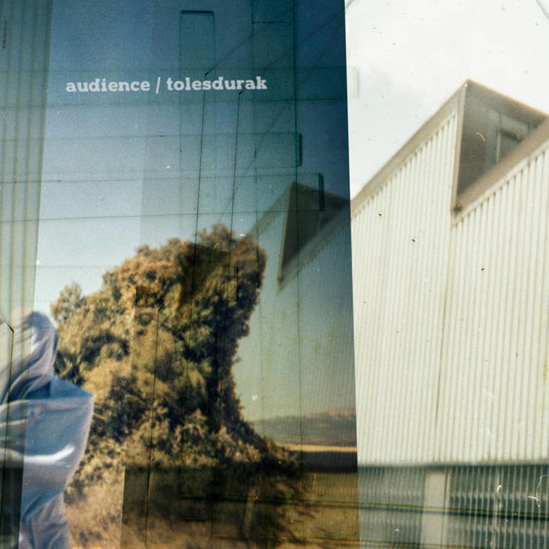 (LP) TOLESDURAK