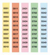 PAQ / 10 SERIE TIRAS RIFAS 1-10000 R: 13110