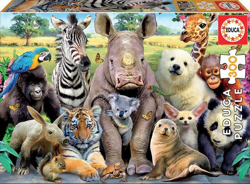 Puzzle Junior 300 * Foto De Clase R: 15908 -