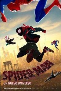 SPIDER-MAN: UN NUEVO UNIVERSO (DVD)