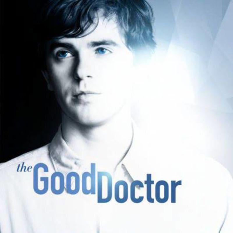 THE GOOD DOCTOR, TEMPORADA 4 (DVD)
