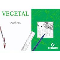 C / 250 LAM. P. VEGETAL A4 90 / 95GR R: 200406219