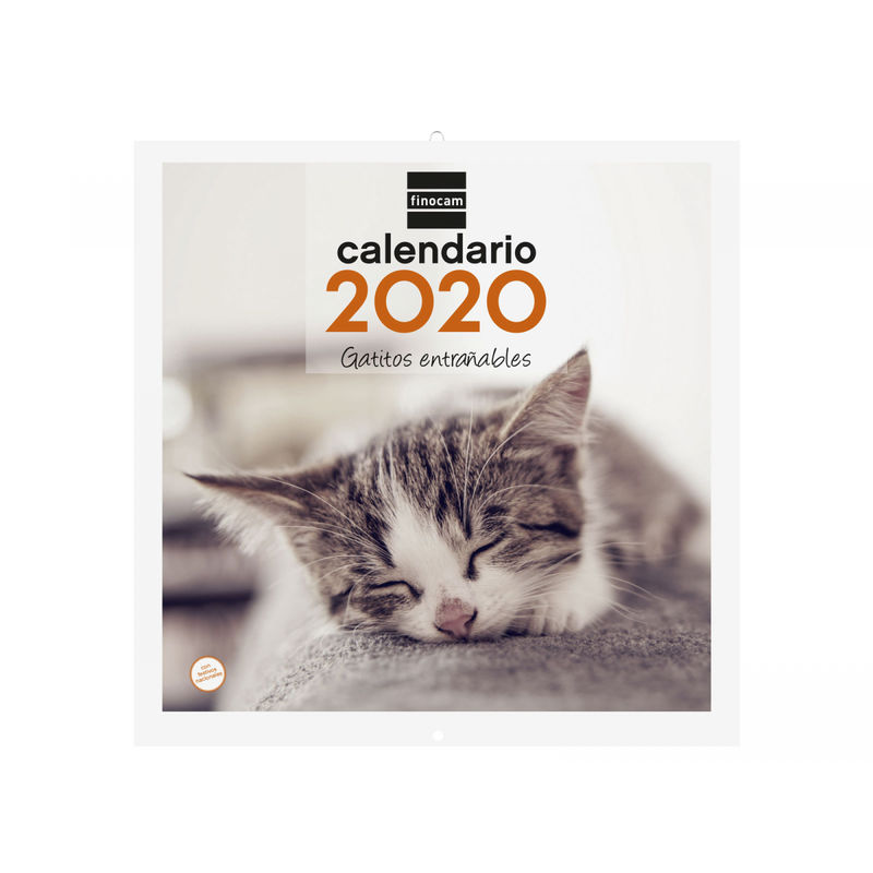 2020 * CALENDARIO PARED 30X30 GATITOS