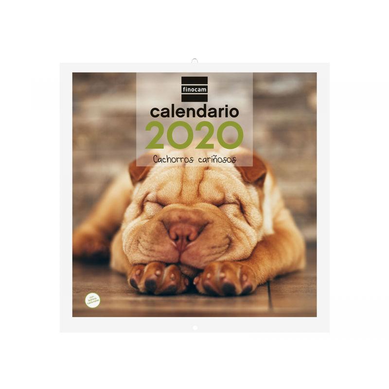 2020 * CALENDARIO PARED 30X30 CACHORROS