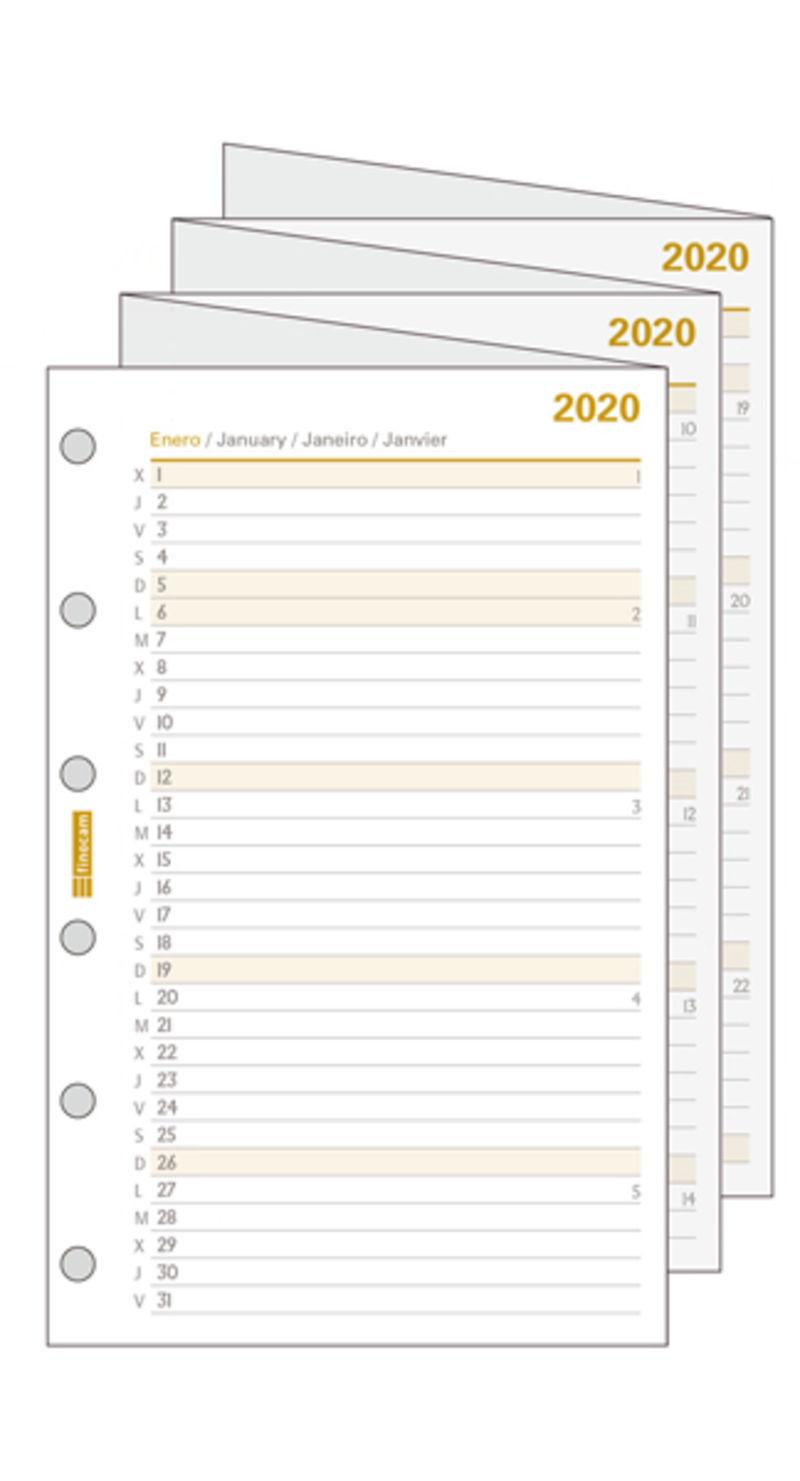2020 * RECAMBIO C296 PLANIFICADOR DESPLEGABLE 602