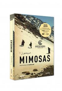 MIMOSAS (DVD+BD)