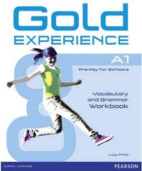 GOLD EXPERIENCE A1 GRAMM & VOCABULARY WB