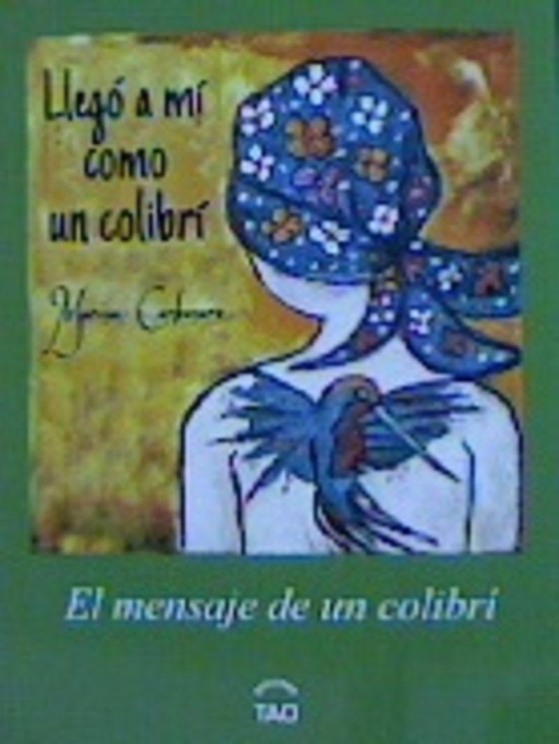 LLEGO A MI COMO UN COLIBRI - EL MENSAJE DEL COLIBRI