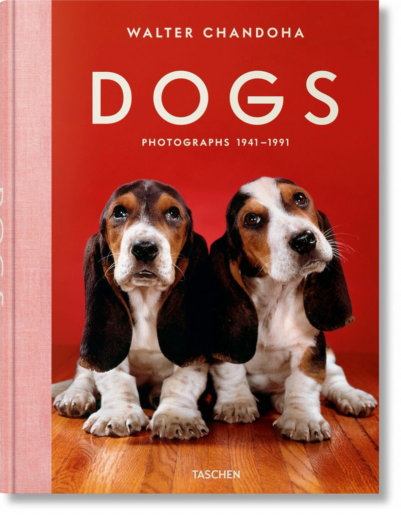 DOGS PHOTOGRAPHS (1941-1991)