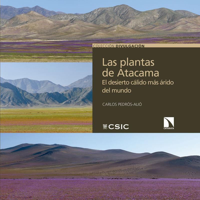 LAS PLANTAS DE ATACAMA - EL DESIERTO CALIDO MAS ARIDO DEL MUNDO