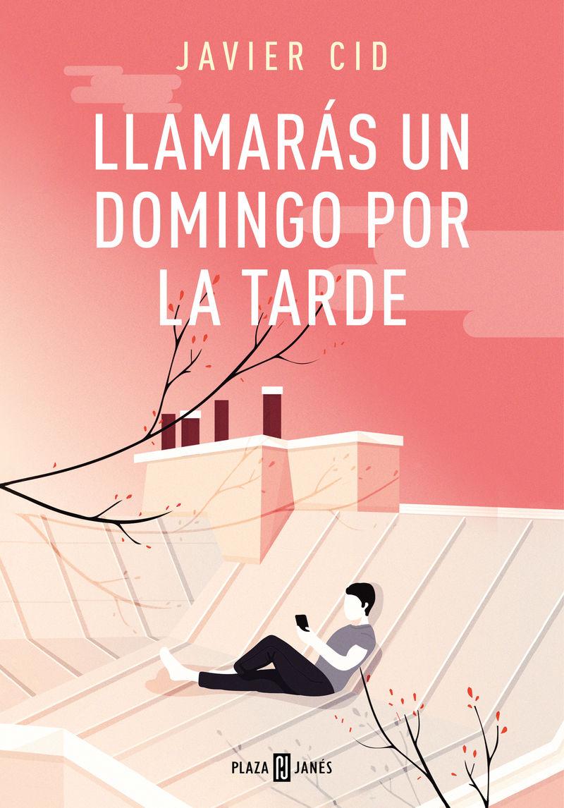 Llamaras Un Domingo Por La Tarde - Javier Cid