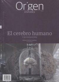 ORIGEN 20 - EL CEREBRO HUMANO - Y SU EVOLUCION