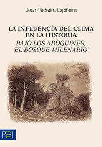 LA INFLUENCIA DEL CLIMA EN LA HISTORIA - BAJO LOS ADOQUINES, EL BOSQUE MILENARIO