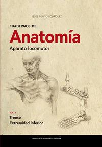 cuadernos de anatomia - aparato locomotor i - tronco. extremidad inferior - Jesus Benito Rodriguez