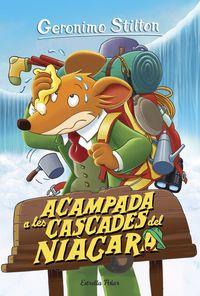 ACAMPADA A LES CASCADES DEL NIAGARA