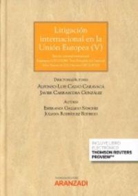 LITIGACION INTERNACIONAL EN LA UNION EUROPEA V (DUO)