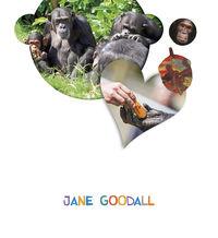 4 AÑOS - JANE GOODALL - ¿LO VES?