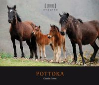 pottoka - Claude Coste