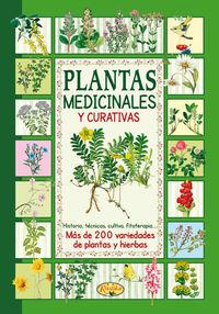Plantas Medicinales Y Curativas - El Sabor De Nuestra Tierra - Aa. Vv.