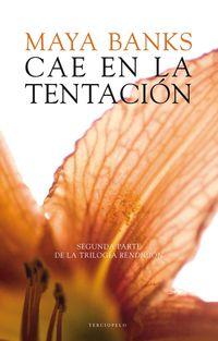 CAE EN LA TENTACION (ED LIMITADA)