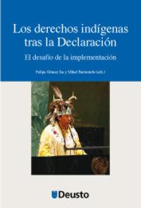 DERECHOS INDIGENAS TRAS LA DECLARACION, LOS