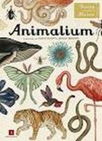 Animalium - Jenny Broom / Katie Scott