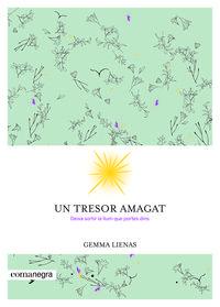 Un tresor amagat - Gemma Lienas Massot