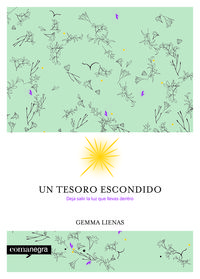 Un tesoro escondido - Gemma Lienas Massot