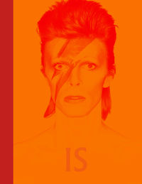 David Bowie Is Inside - Victoria Broackes / Geoffrey Marsh
