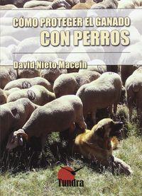 COMO PROTEGER EL GANADO CON PERROS
