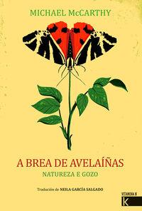 BREA DE AVELAIÑAS, A - NATUREZA E GOZO