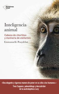 Inteligencia Animal - Cabeza De Chorlitos Y Memoria De Elefantes - Emmanuelle Pouydebat