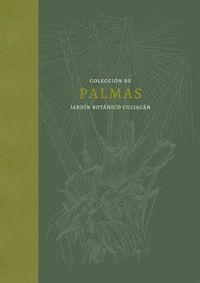 PALMAS - LA COLECCION DEL JARDIN BOTANICO CULIACAN EN MEXICO