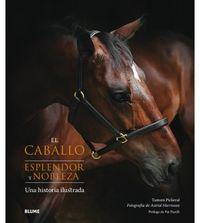 Caballo, El - Esplendor Y Nobleza - Una Historia Ilustrada - Tamsin Pickeral / Astrid Harrisson
