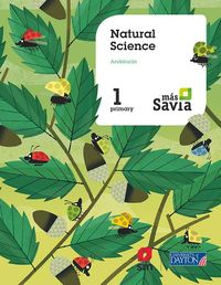 EP 1 - NATURAL SCIENCE (AND) - MAS SAVIA
