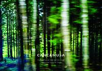 Cancamusa - Victor Manuel Diez Garcia
