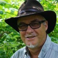 Baños De Bosque - Siente El Poder Curativo De La Naturaleza, Vive El Shinrin Yoku - M. Amos Clifford