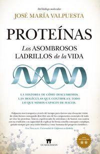 PROTEINAS - LOS ASOMBROSOS LADRILLOS DE LA VIDA