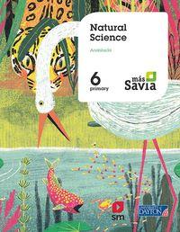 EP 6 - NATURAL SCIENCE (AND) - MAS SAVIA