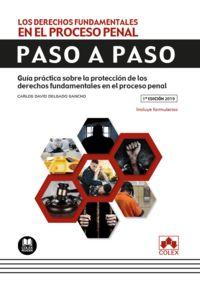 Derechos Fundamentales En El Proceso Penal, Los - Paso A Paso - Guia Practica Sobre La Proteccion De Los Derechos Fundamentales En El Proceso Penal - Carlos David Delgado Sancho