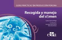 GUIAS PRACTICAS EN PRODUCCION PORCINA - RECOGIDA Y MANEJO DEL SEMEN