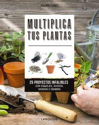 MULTIPLICA TUS PLANTAS - 25 PROYECTOS INFALIBLES CON ESQUEJES, ACODOS, DIVISION O SIEMBRA