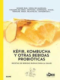 KEFIR, KOMBUCHA Y OTRAS BEBIDAS PROBIOTICAS - RECETAS DE BEBIDAS BUENAS PARA LA SALUD