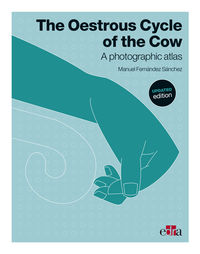OESTROUS CYCLE OF THE COW, THE