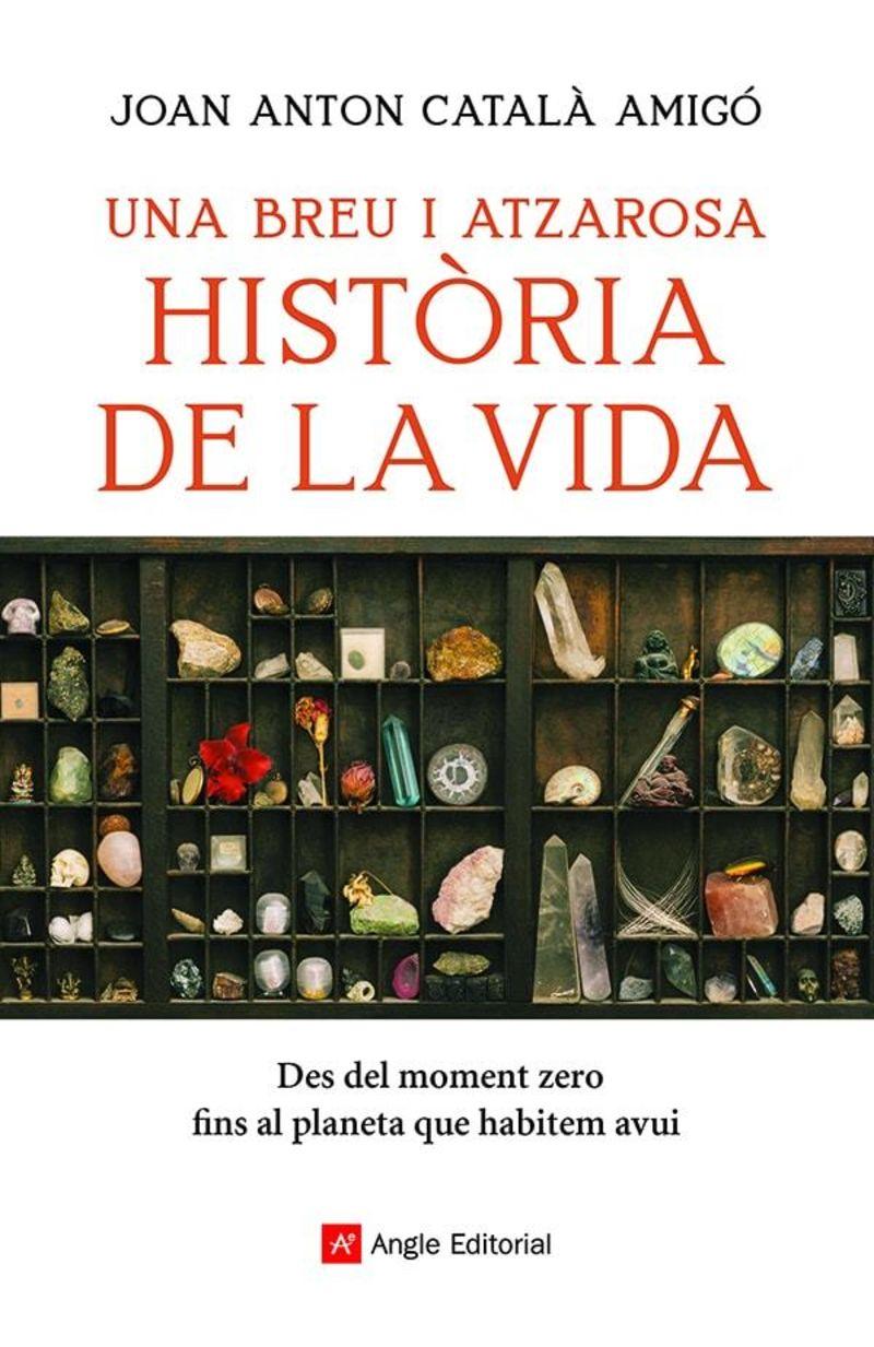 UN BREU I ATZAROSA HISTORIA DE LA VIDA