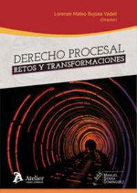 DERECHO PROCESAL - RETOS Y TRANSFORMACIONES