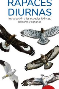 (12 ED) RAPACES DIURNAS - GUIAS DESPLEGABLES